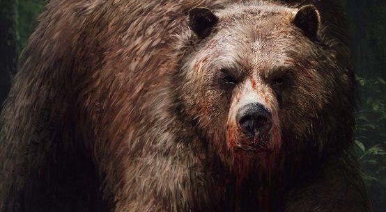 sezon niedźwiedzia